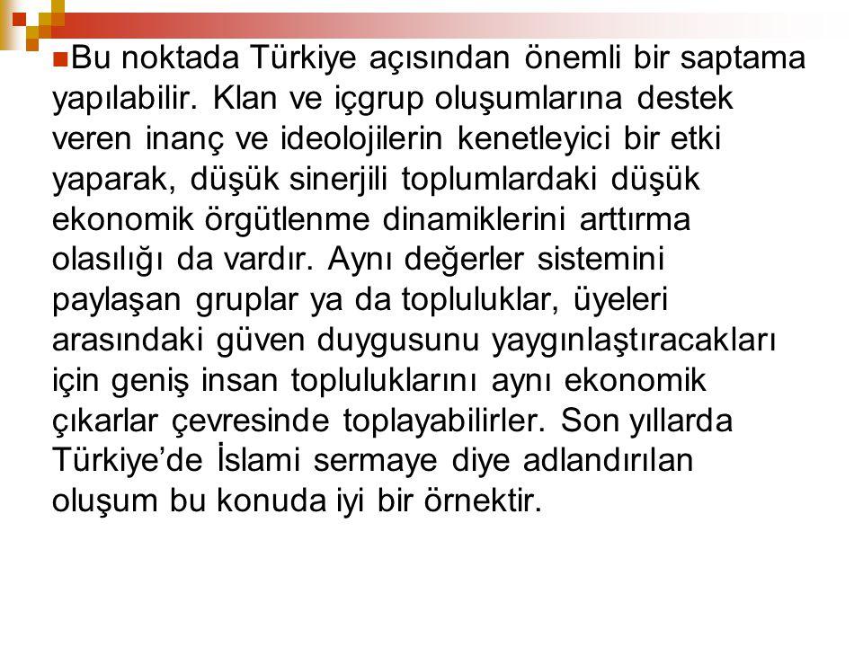 Bu noktada Türkiye açısından önemli bir saptama yapılabilir. Klan ve içgrup oluşumlarına destek veren inanç ve ideolojilerin kenetleyici bir etki yapa