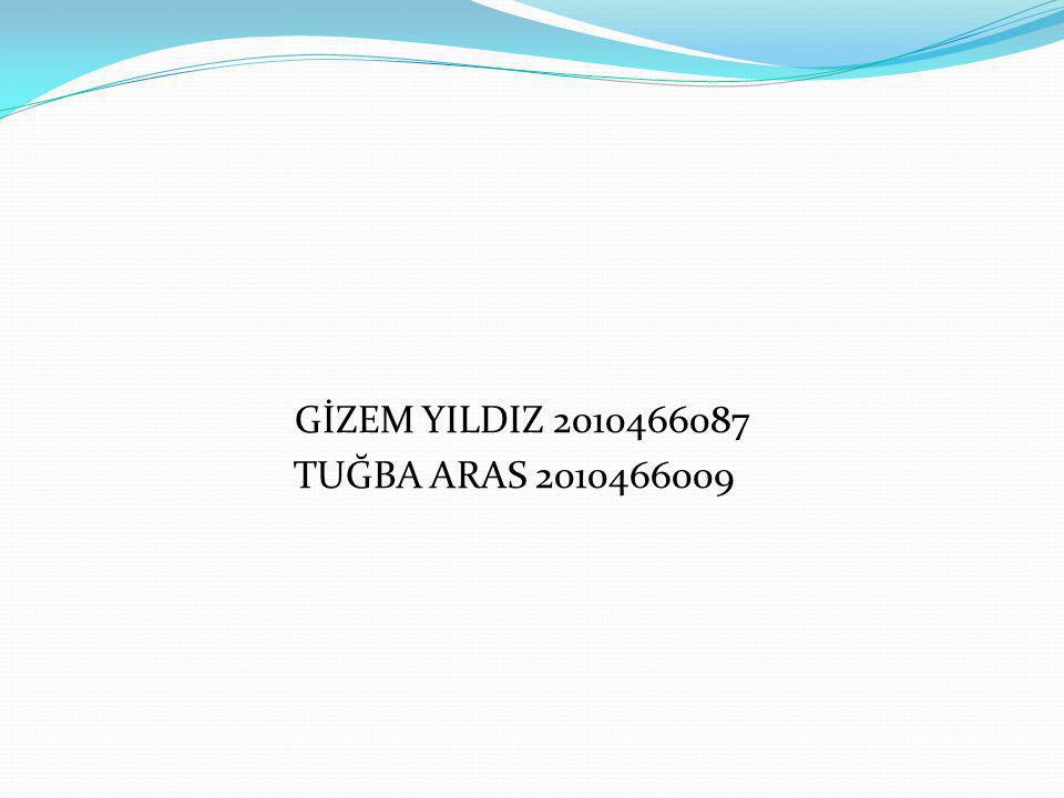 GİZEM YILDIZ 2010466087 TUĞBA ARAS 2010466009