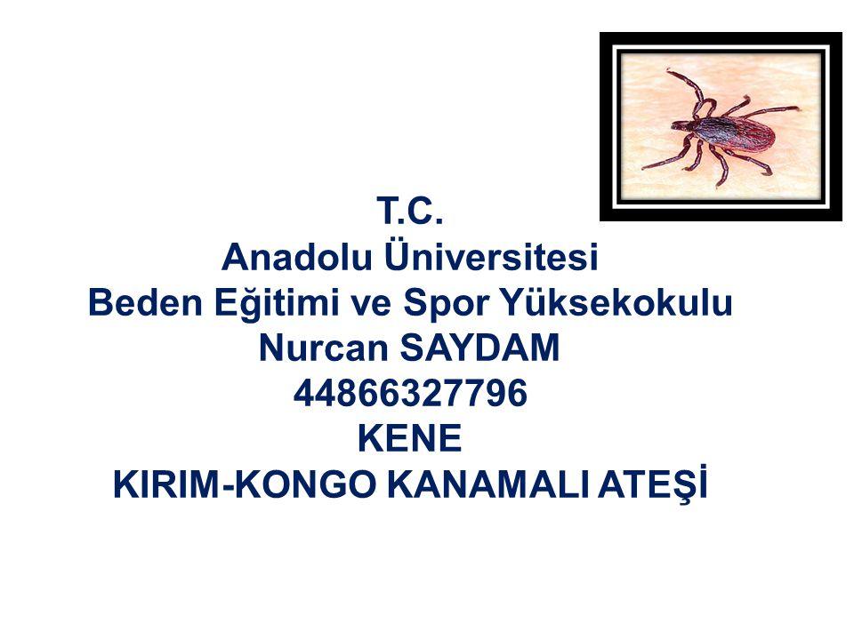 KENE KIRIM-KONGO KANAMALI ATEŞİ Kırım-Kongo Kanamalı Ateş (KKKA): Keneler tarafından taşınan Nairovirüs grubundan bir virüsle oluşan ateş, cilt içi ve diğer vücut alanlarında kanama gibi bulgular ile seyreden hayvan kaynaklı bir enfeksiyondur.