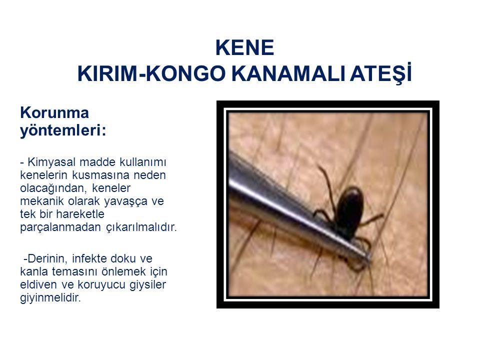 KENE KIRIM-KONGO KANAMALI ATEŞİ Korunma yöntemleri: -Uzun çorap, bot, uzun pantolon giyilmeli ve pantolon çorabın ya da botların içine, tişörtün alt kısmı da bele yerleştirilmelidir -Deriye (örn.DEET) ve giysilere (örn.permentin) repellent (böcek kovucu, itici sıvı) sürülmelidir.