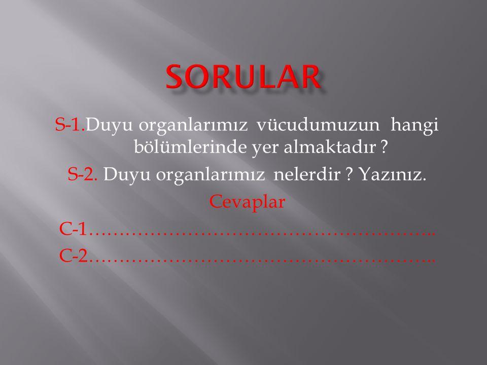 S-1.Duyu organlarımız vücudumuzun hangi bölümlerinde yer almaktadır .