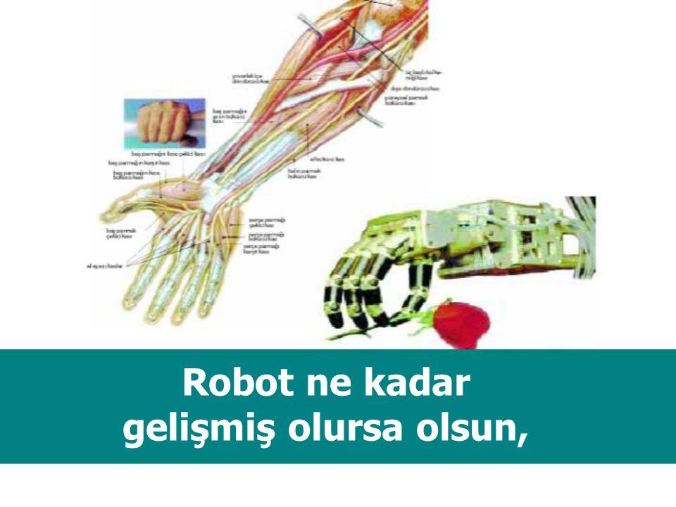 İnsan Elinin yaratılması