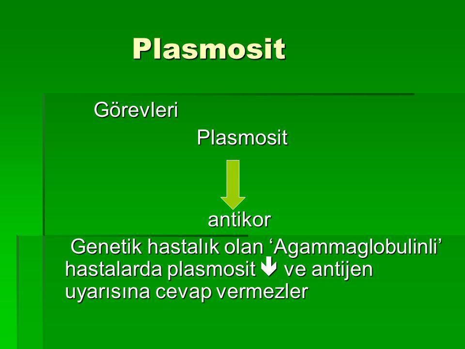 Plasmosit Plasmosit Görevleri Görevleri Plasmosit Plasmosit antikor antikor Genetik hastalık olan 'Agammaglobulinli' hastalarda plasmosit  ve antijen uyarısına cevap vermezler Genetik hastalık olan 'Agammaglobulinli' hastalarda plasmosit  ve antijen uyarısına cevap vermezler