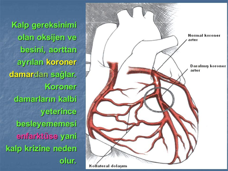 Kalp gereksinimi olan oksijen ve besini, aorttan ayrılan koroner damardan sağlar. Koroner damarların kalbi yeterince besleyememesi enfarktüse yani kal