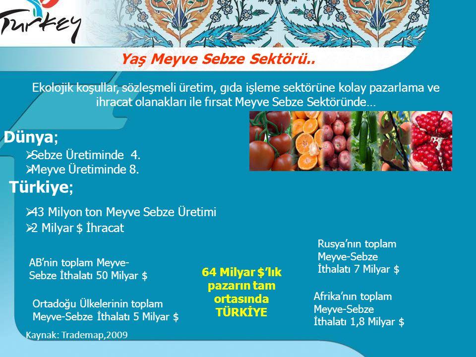 Yaş Meyve Sebze Sektörü..