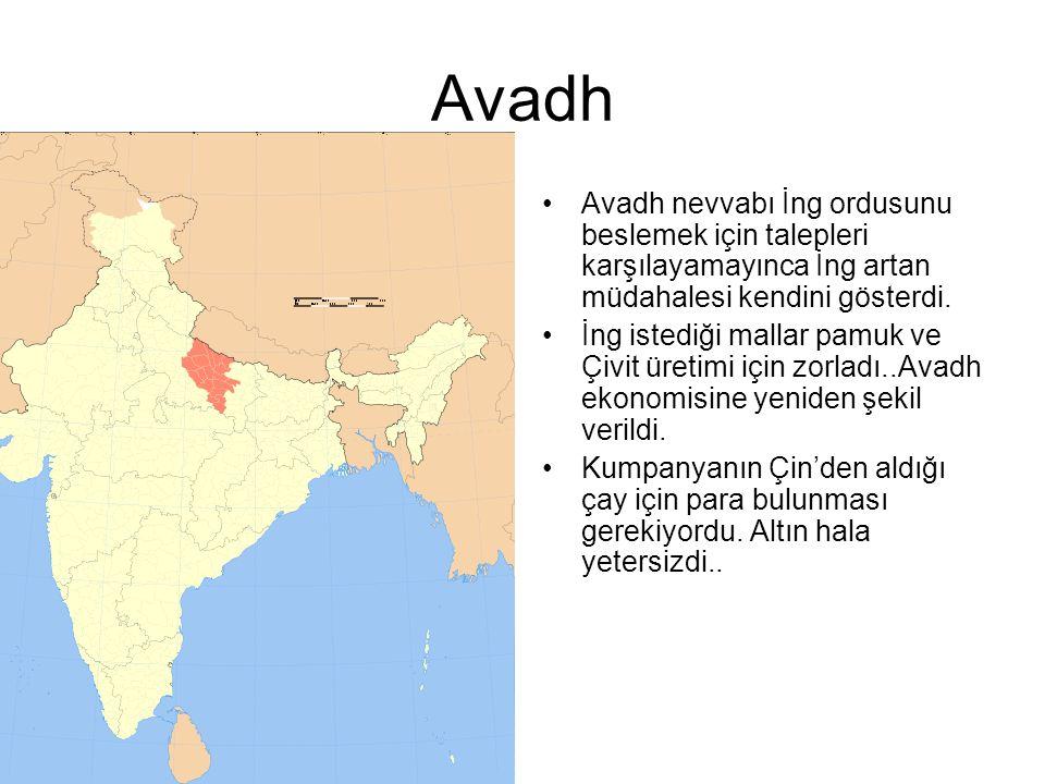 Avadh Avadh nevvabı İng ordusunu beslemek için talepleri karşılayamayınca İng artan müdahalesi kendini gösterdi. İng istediği mallar pamuk ve Çivit ür