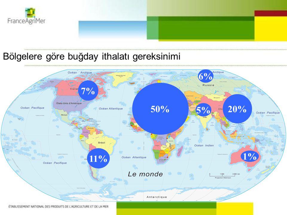 50% 1% 5% 6% 11% Bölgelere göre buğday ithalatı gereksinimi 20% 7%