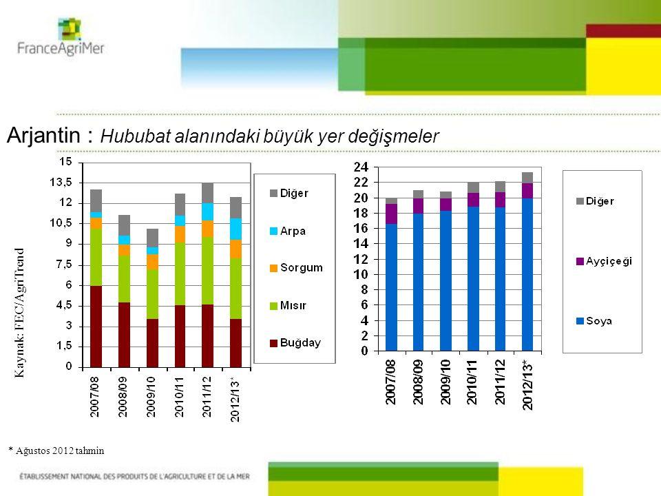 Kaynak : FEC/AgriTrend * Ağustos 2012 tahmin Arjantin : Hububat alanındaki büyük yer değişmeler