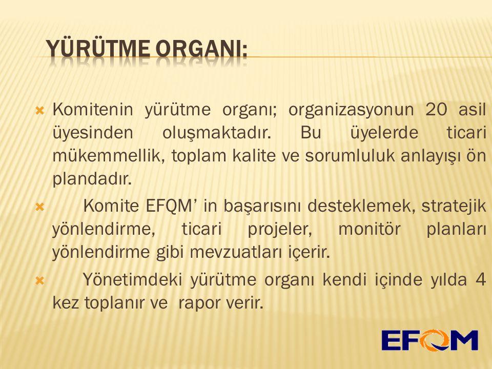  Komitenin yürütme organı; organizasyonun 20 asil üyesinden oluşmaktadır.