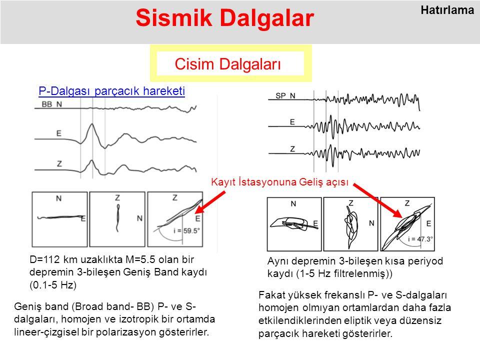 Sismik Dalgalar Geniş band (Broad band- BB) P- ve S- dalgaları, homojen ve izotropik bir ortamda lineer-çizgisel bir polarizasyon gösterirler.
