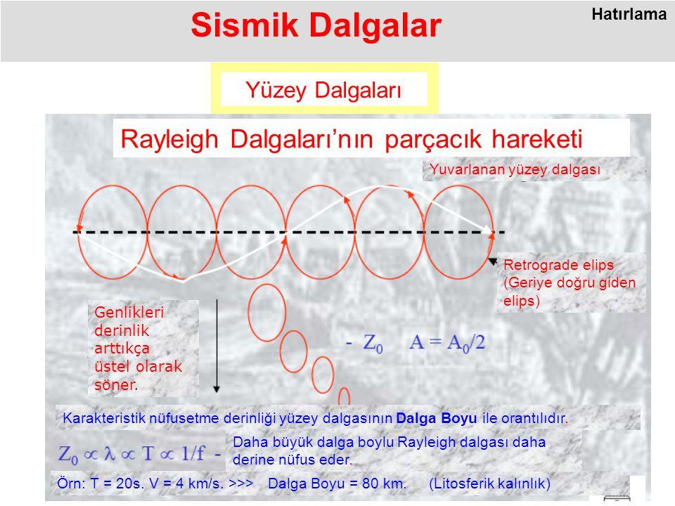 Yüzey Dalgaları Rayleigh Dalgaları'nın parçacık hareketi Örn: T = 20s.