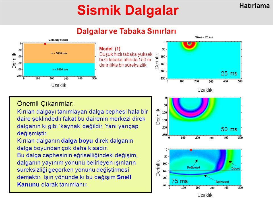 Sismik Dalgalar Dalgalar ve Tabaka Sınırları Uzaklık Derinlik 50 ms Uzaklık Derinlik 25 ms 75 ms Uzaklık Derinlik Model: (1) Düşük hızlı tabaka yüksek hızlı tabaka altında 150 m derinlikte bir süreksizlik Önemli Çıkarımlar: Kırılan dalgayı tanımlayan dalga cephesi hala bir daire şeklindedir fakat bu dairenin merkezi direk dalganın ki gibi 'kaynak' değildir.