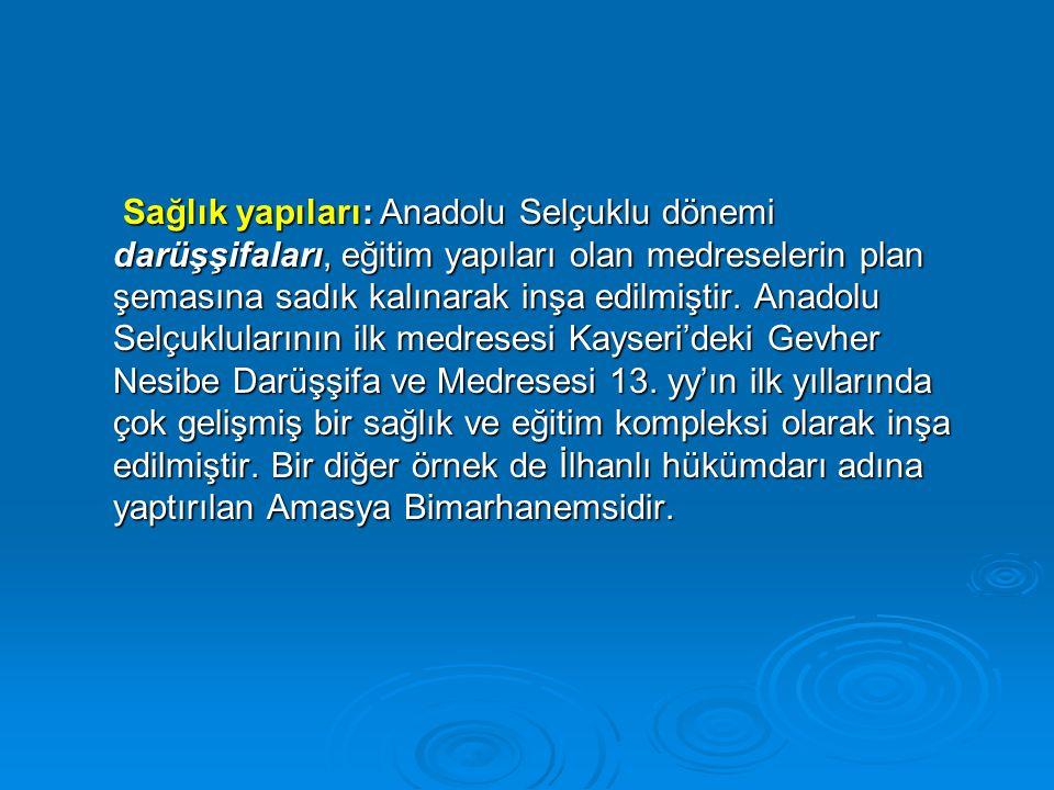 Sağlık yapıları: Anadolu Selçuklu dönemi darüşşifaları, eğitim yapıları olan medreselerin plan şemasına sadık kalınarak inşa edilmiştir. Anadolu Selçu