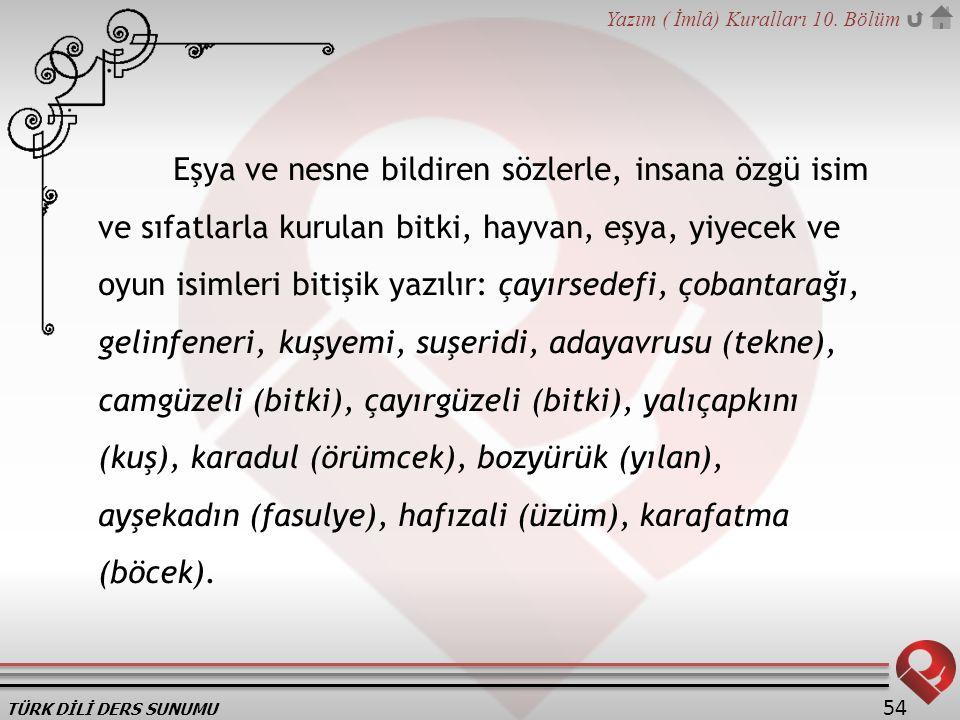 TÜRK DİLİ DERS SUNUMU Yazım ( İmlâ) Kuralları 10. Bölüm 54 Eşya ve nesne bildiren sözlerle, insana özgü isim ve sıfatlarla kurulan bitki, hayvan, eşya
