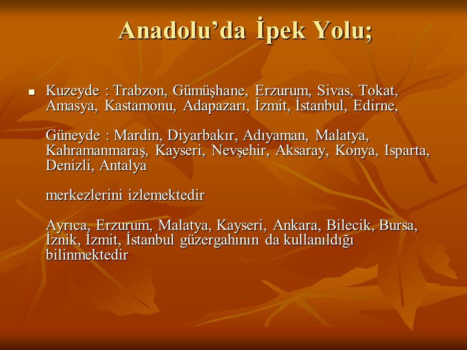 Anadolu'da İpek Yolu; Kuzeyde : Trabzon, Gümüşhane, Erzurum, Sivas, Tokat, Amasya, Kastamonu, Adapazarı, İzmit, İstanbul, Edirne, Güneyde : Mardin, Di