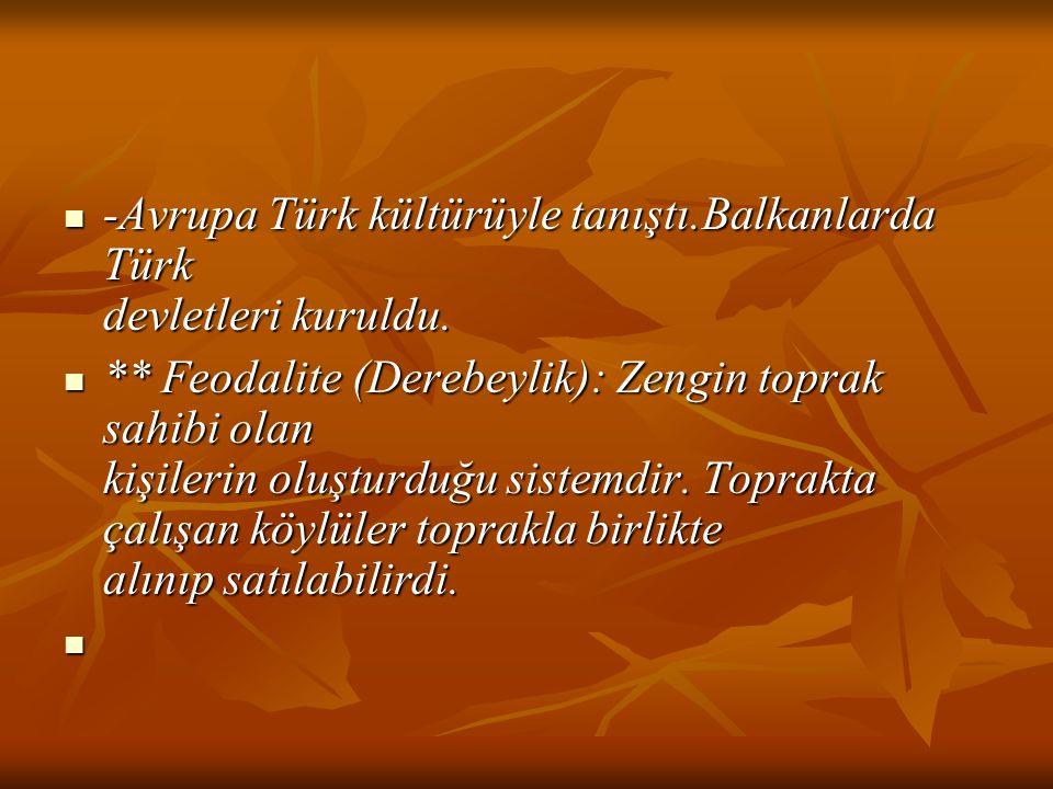 -Avrupa Türk kültürüyle tanıştı.Balkanlarda Türk devletleri kuruldu. -Avrupa Türk kültürüyle tanıştı.Balkanlarda Türk devletleri kuruldu. ** Feodalite