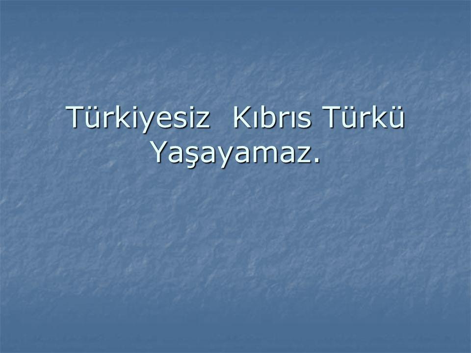 Türkiye için Kıbrıs neden vazgeçilmezdir.