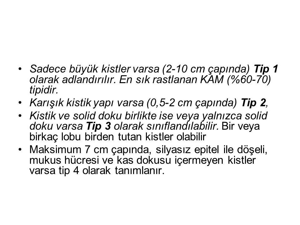 Sadece büyük kistler varsa (2-10 cm çapında) Tip 1 olarak adlandırılır. En sık rastlanan KAM (%60-70) tipidir. Karışık kistik yapı varsa (0,5-2 cm çap