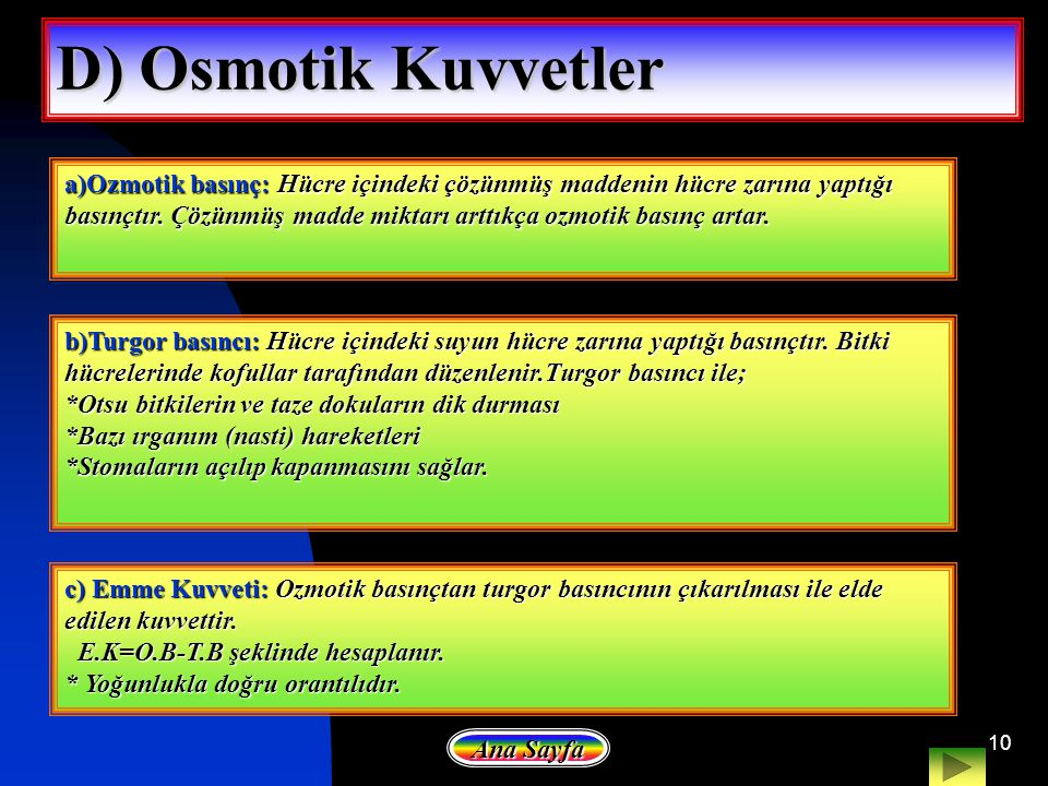 10 D) Osmotik Kuvvetler a)Ozmotik basınç: Hücre içindeki çözünmüş maddenin hücre zarına yaptığı basınçtır. Çözünmüş madde miktarı arttıkça ozmotik bas