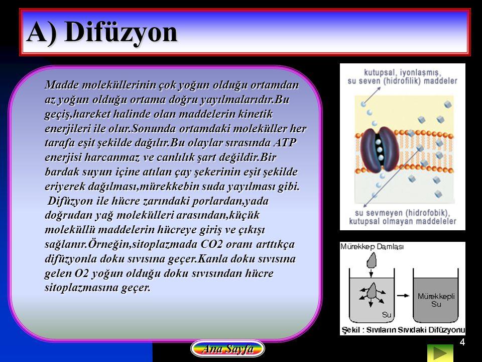 4 A) Difüzyon Madde moleküllerinin çok yoğun olduğu ortamdan az yoğun olduğu ortama doğru yayılmalarıdır.Bu geçiş,hareket halinde olan maddelerin kine