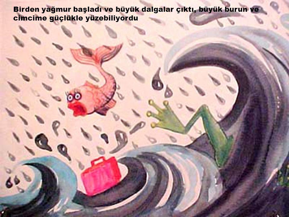 Birden yağmur başladı ve büyük dalgalar çıktı, büyük burun ve cimcime güçlükle yüzebiliyordu