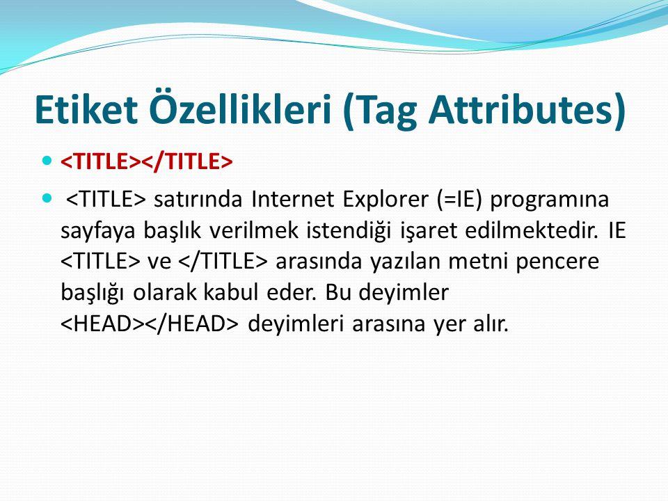 Etiket Özellikleri (Tag Attributes) satırında Internet Explorer (=IE) programına sayfaya başlık verilmek istendiği işaret edilmektedir. IE ve arasında