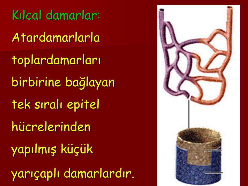 KILCALDAMAR