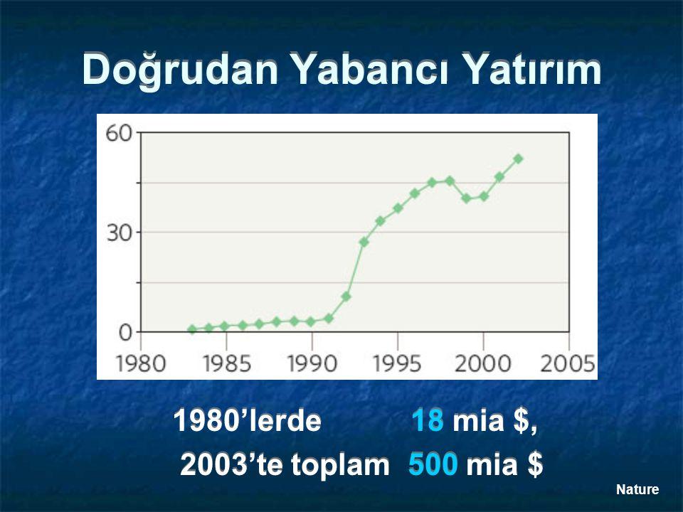 Doğrudan Yabancı Yatırım 1980'lerde 18 mia $, 2003'te toplam 500 mia $ 1980'lerde 18 mia $, 2003'te toplam 500 mia $ Nature