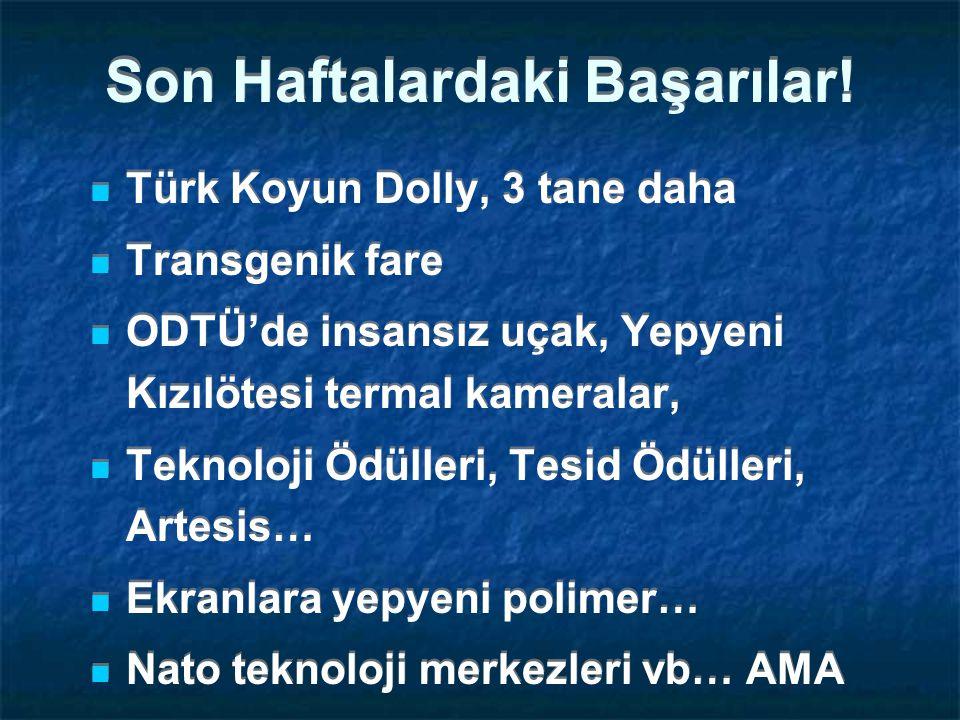 Yenilikçilik, AB ve Türkiye Avrupa Yenilikçilik Konumları, 2006 Yenilikçi Liderler İzleyenler Türkiye Koşanlar Geri kalanlar