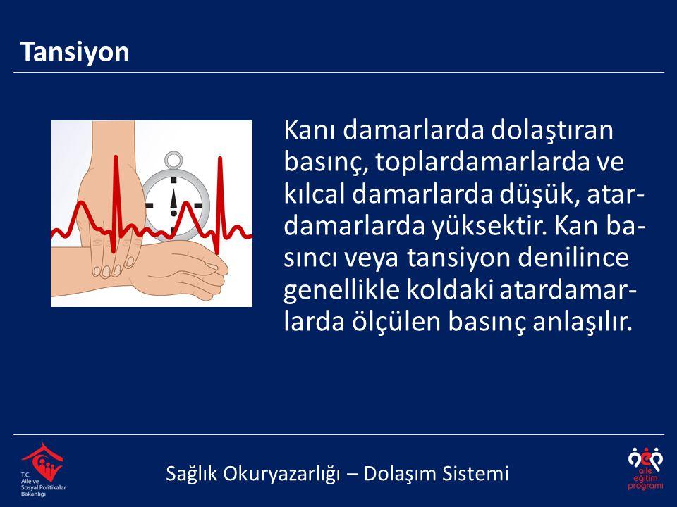 Tansiyon Sağlık Okuryazarlığı – Dolaşım Sistemi Kanı damarlarda dolaştıran basınç, toplardamarlarda ve kılcal damarlarda düşük, atar- damarlarda yükse