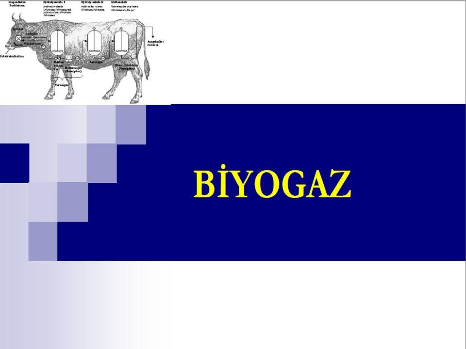 Elektrik ile kazanç Biyogaz tesisi, bir gaz motoru ve bir jeneratörden oluşan co-jenerasyon seti ile elektrik üretir.