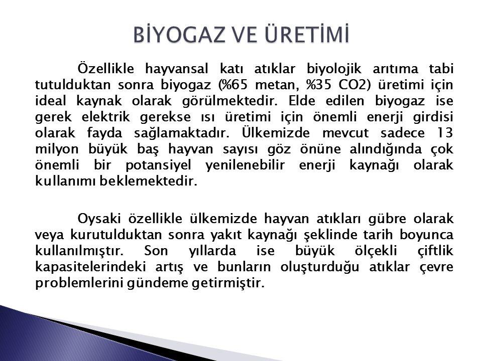 Yapılan değerlendirmeler ışığında Türkiye'de anaerobik biyoteknolojinin başta gıda endüstrisi ve atık çamurlarının arıtımında olmak üzere endüstriyel arıtımda elde edilen tecrübelerin hayvansal atıkların ve tarımsal atıkların biyogaz üretiminde yeteri kadar değerlendirilmediği açıkça görülmektedir.