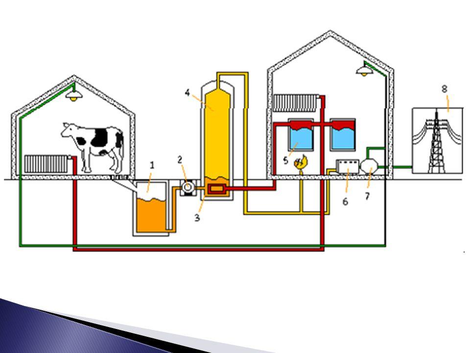 Biyogaz doğalgazın kullanım alanlarıyla parelel olarak kullanılabilen bir enerji kaynağıdır.