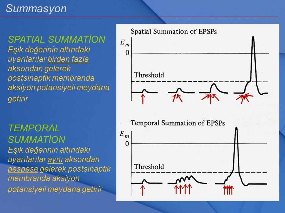 Summasyon SPATIAL SUMMATİON Eşik değerinin altındaki uyarılarılar birden fazla aksondan gelerek postsinaptik membranda aksiyon potansiyeli meydana get