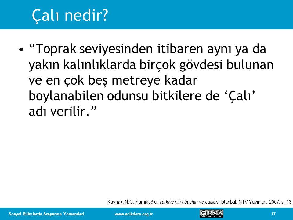 17Sosyal Bilimlerde Araştırma Yöntemleriwww.acikders.org.tr Çalı nedir.