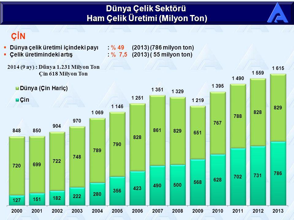 ÇİN Dünya Çelik Sektörü Ham Çelik Üretimi (Milyon Ton)  Dünya çelik üretimi içindeki payı: % 49 (2013) (786 milyon ton)  Çelik üretimindeki artış: % 7,5 (2013) ( 55 milyon ton) 2014 (9 ay) : Dünya 1.231 Milyon Ton Çin 618 Milyon Ton