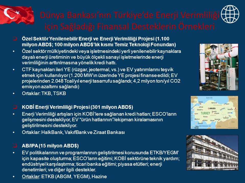 Dünya Bankası'nın Türkiye'de Enerji Verimliliği için Sağladığı Finansal Desteklerin Örnekleri  Özel Sektör Yenilenebilir Enerji ve Enerji Verimliliği Projesi (1.100 milyon ABD$; 100 milyon ABD$'lık kısmı Temiz Teknoloji Fonundan) Özel sektör mülkiyetindeki veya işletmesindeki yerli yenilenebilir kaynaklara dayalı enerji üretiminin ve büyük ölçekli sanayi işletmelerinde enerji verimliliğinin arttırılmasına yönelik kredi hattı.