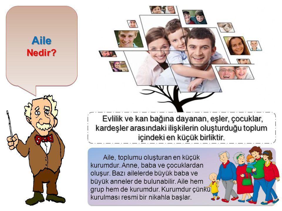 AileNedir?AileNedir? Evlilik ve kan bağına dayanan, eşler, çocuklar, kardeşler arasındaki ilişkilerin oluşturduğu toplum içindeki en küçük birliktir.