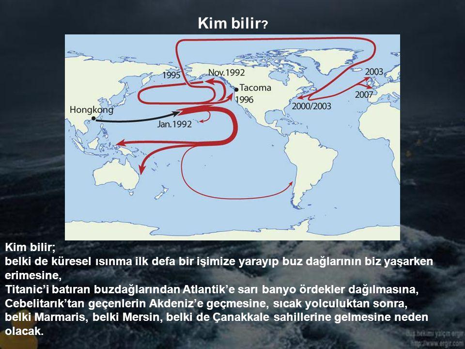 Bering Boğazı'ndan Sivastopol'e Sivastopol'den Gerze'ye…