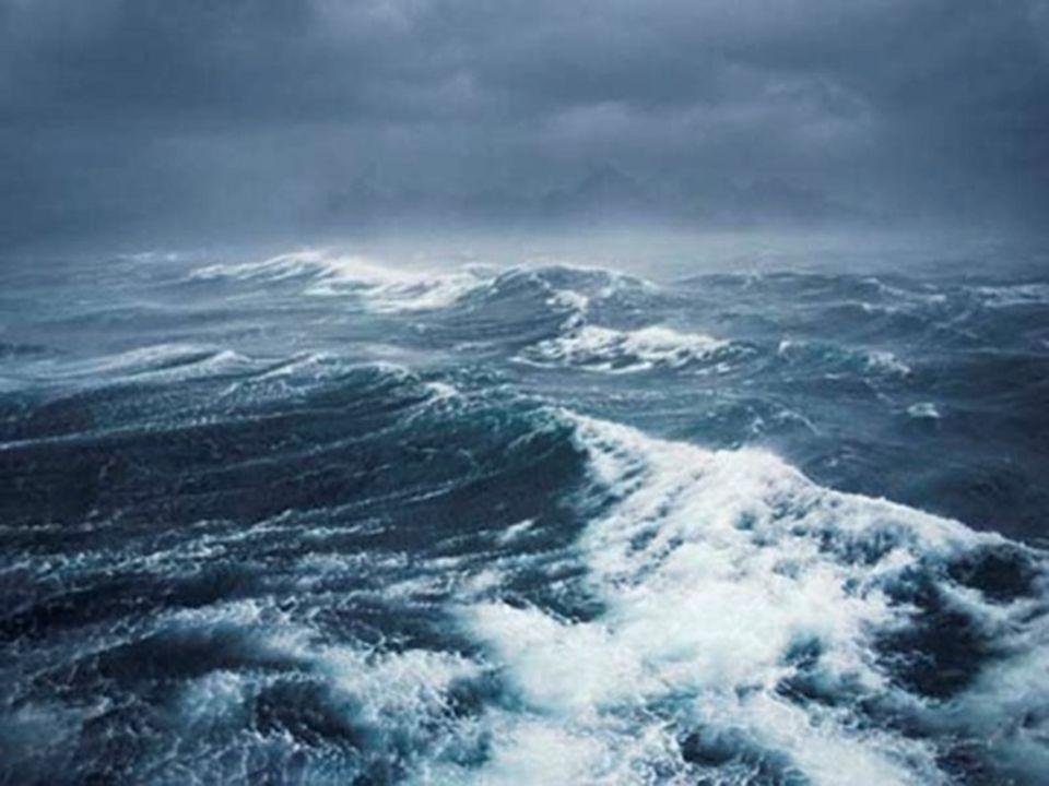 ÖRDEKLER FİRARDA Bir Okyanus Masalı düş hekimi yalçın ergir