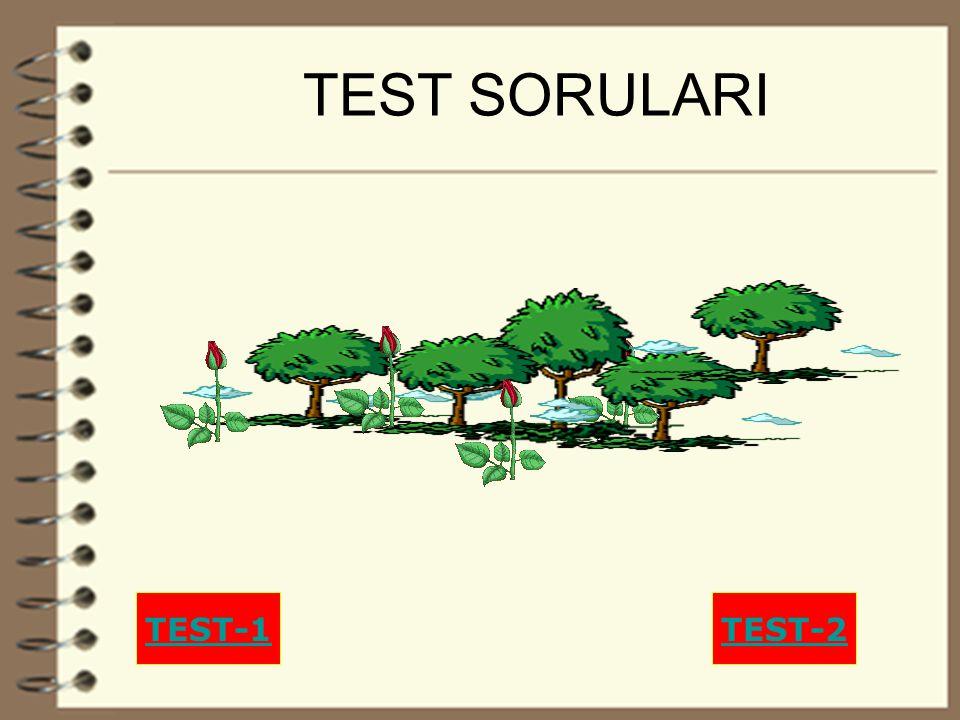 26 TEST SORULARI TEST-1TEST-2