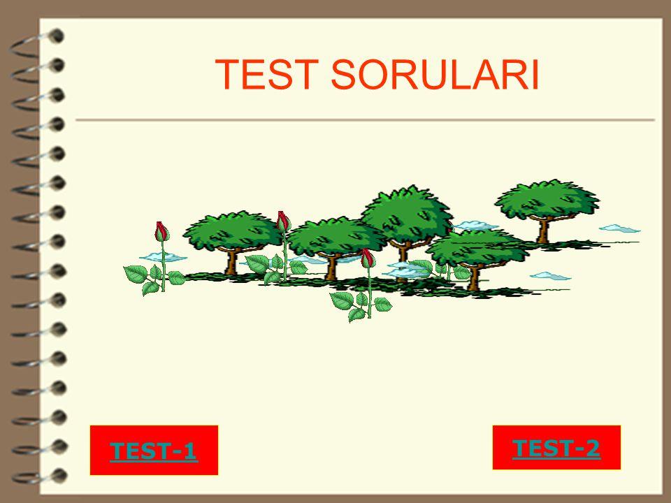29 TEST SORULARI TEST-1 TEST-2