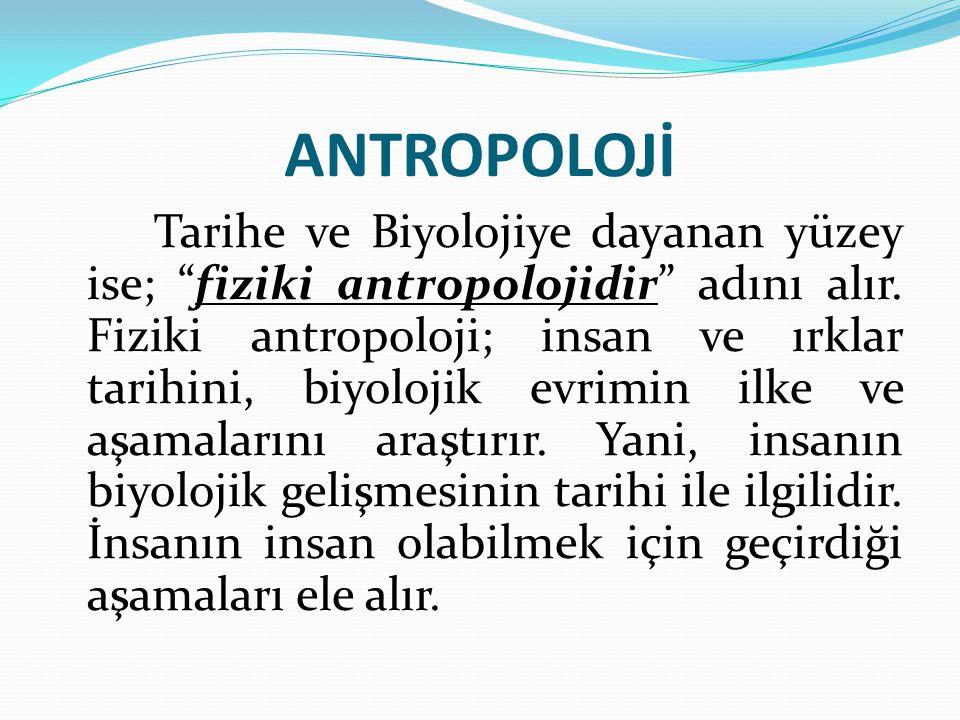 """ANTROPOLOJİ Tarihe ve Biyolojiye dayanan yüzey ise; """"fiziki antropolojidir"""" adını alır. Fiziki antropoloji; insan ve ırklar tarihini, biyolojik evrimi"""