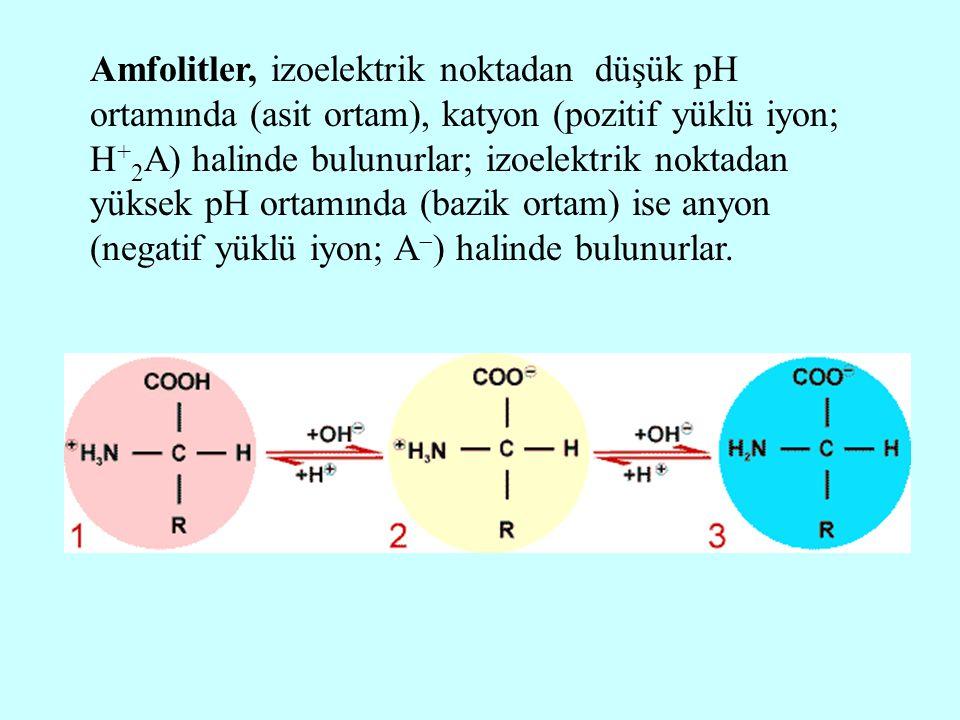 Amfolitler, izoelektrik noktadan düşük pH ortamında (asit ortam), katyon (pozitif yüklü iyon; H + 2 A) halinde bulunurlar; izoelektrik noktadan yüksek