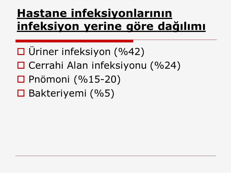 Hastane İnfeksiyonlarının Önemi  19.