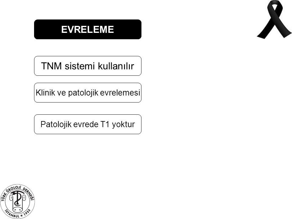EVRELEME TNM sistemi kullanılır Klinik ve patolojik evrelemesi Patolojik evrede T1 yoktur