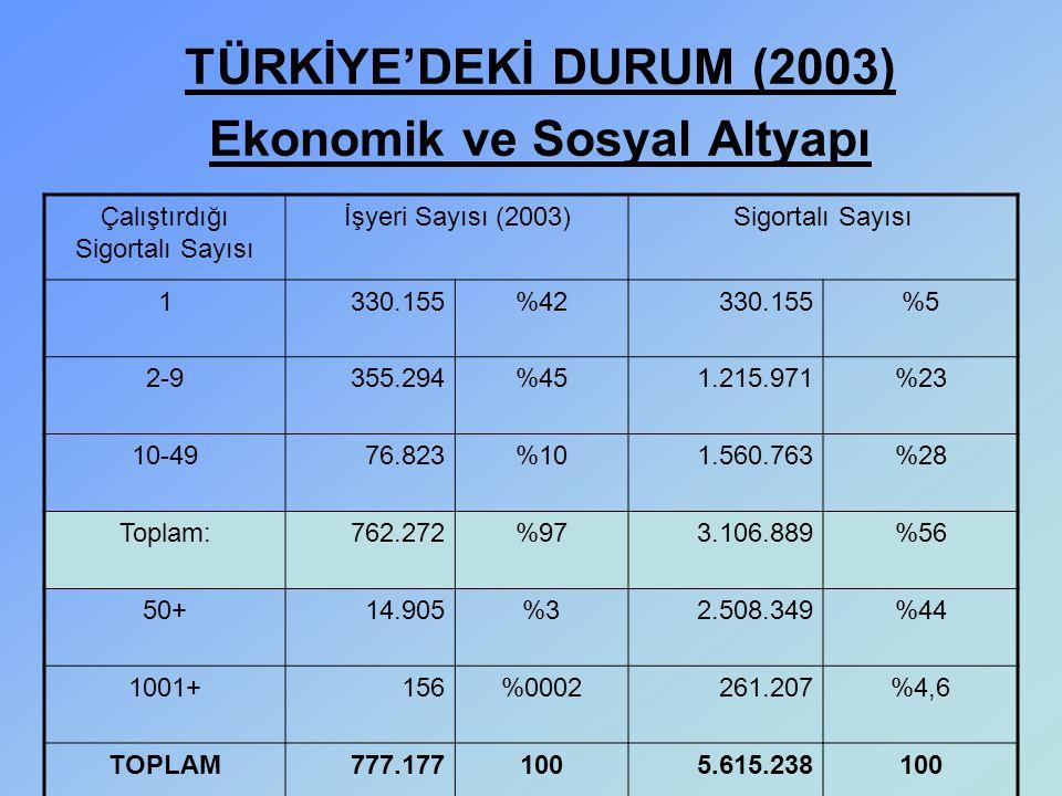 TÜRKİYE'DEKİ DURUM (2003) Ekonomik ve Sosyal Altyapı Çalıştırdığı Sigortalı Sayısı İşyeri Sayısı (2003)Sigortalı Sayısı 1330.155%42330.155%5 2-9355.29
