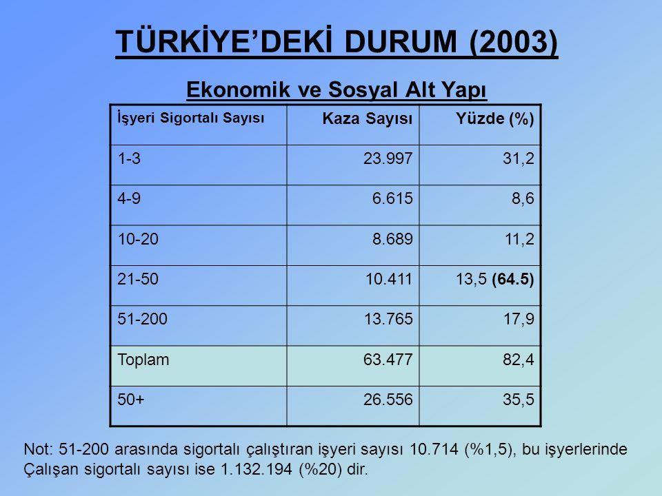TÜRKİYE'DEKİ DURUM (2003) Ekonomik ve Sosyal Alt Yapı İşyeri Sigortalı Sayısı Kaza SayısıYüzde (%) 1-323.99731,2 4-96.6158,6 10-208.68911,2 21-5010.41