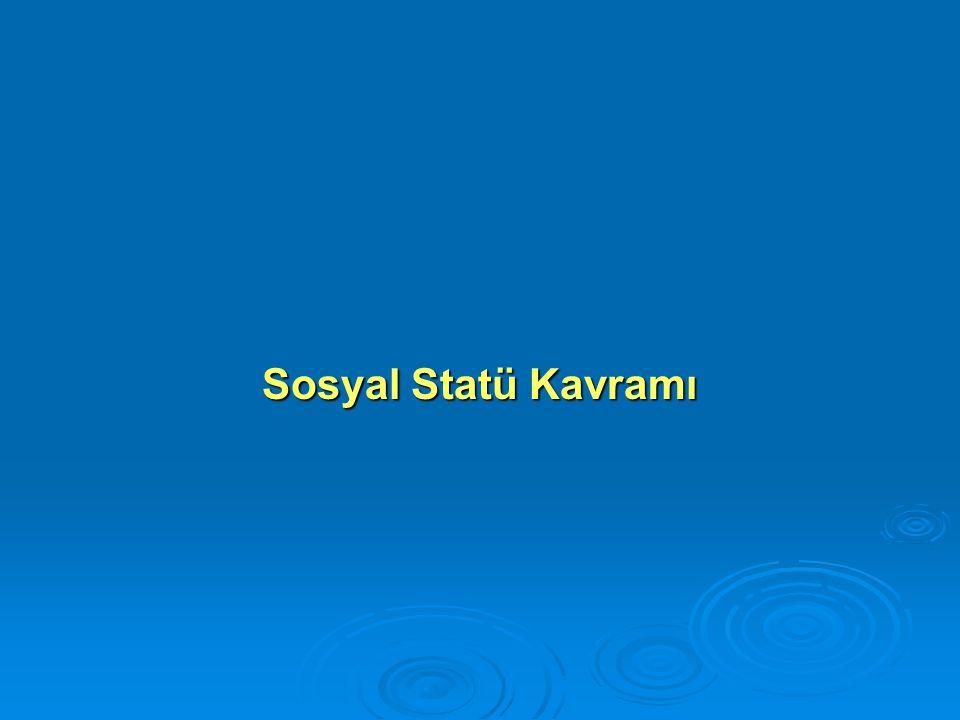Sosyal Statü Kavramı