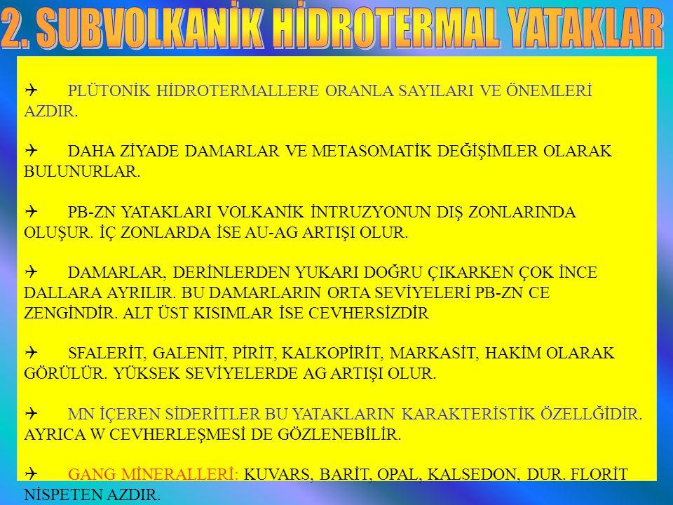 PLÜTONİK HİDROTERMALLERE ORANLA SAYILARI VE ÖNEMLERİ AZDIR.